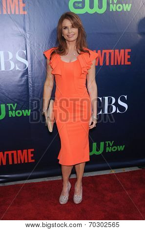LOS ANGELES - JUL 17:  Roma Downey arrives to the CBS-CW-Showtime Summer TCA Press Tour 2014  on July7, 2014 in West Hollywood, CA.