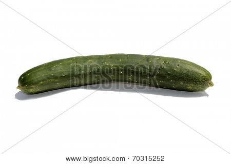 A Genuine home grown cucumber isolated on white with room for your text. Cucumbers are eaten around the world by hungry people in salads, soups and various dishes. Cucumbers are full of flavor