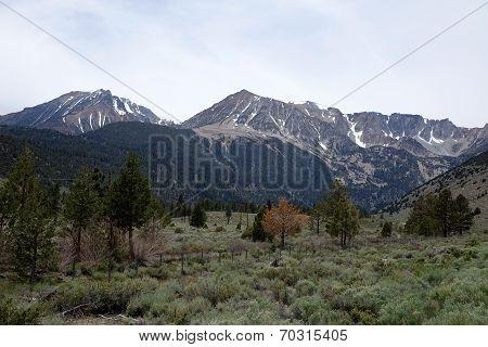 Tioga Pass into Yosemite