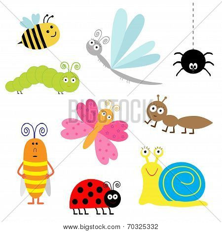 Cute Cartoon Insect Set. Ladybug, Dragonfly, Butterfly, Ant, Spider, Cockroach, Snail.