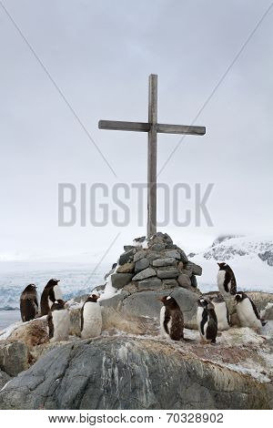Cross At The Site Where The British Wintering And Gentoo Penguins