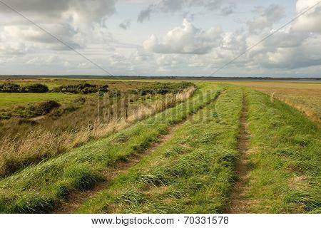 Marshland Dyke.