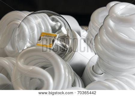 Led Bulb Among The Many Cfl Lamps