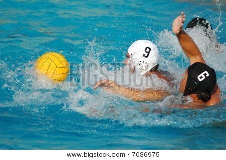Water Polo Fight for the Ball