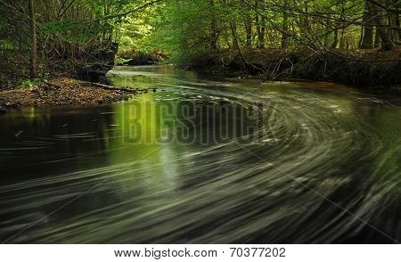 Forest river in Poland