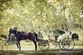 stock photo of chariot  - Vintage photo of tourist chariot in the old city of Palma de Mallorca - JPG