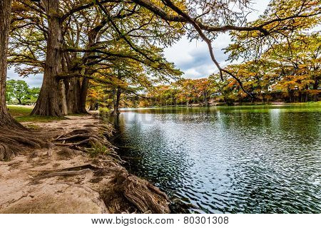 Fall Foliage and Clear Frio River at Garner State Park, Texas
