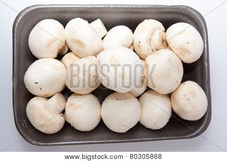 Mushrooms In Black Plastic Tray