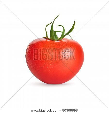 Fresh Wet Tomato With Water Drops