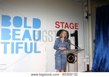 LOS ANGELES - JAN 14:  Colleen Bell, Ambassador to Hungary as the  Bold and Beautiful Celebrates 7000th Show at a CBS Television City on January 14, 2015 in Los Angeles, CA