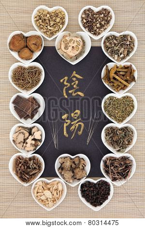 Chinese herbal medicine selection with acupuncture needles and calligraphy script. Translation reads as yin yang.