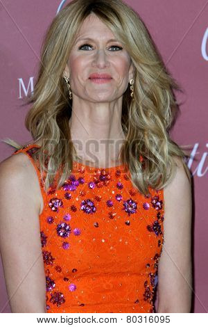 PALM SPRINGS, CA - JAN 3: Laura Dern arrives  at the 2015 Palm Springs Film Festival Awards Gala at the Palm Springs Convention Center on January 3, 2015 in Palm Springs, CA.