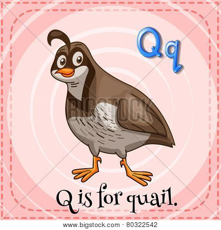 A letter Q for quail
