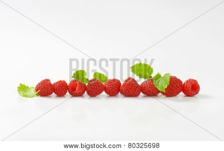 line of pink juicy raspberries decorated with leaves of mint