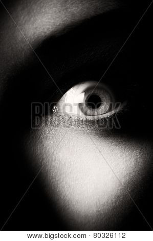 eye. black and white