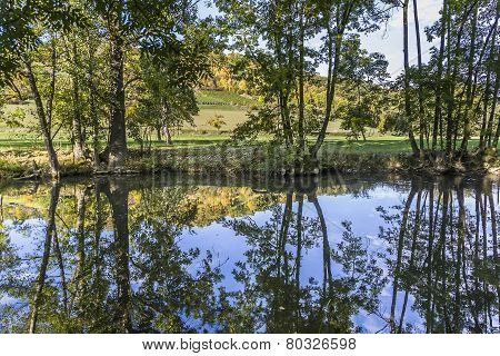 Reflection In The River Tauber In Lovely Tauber Valley