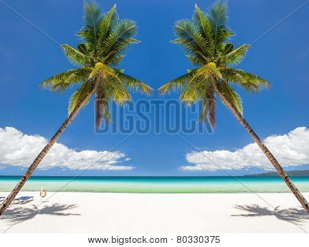 Tropical Beach With Beautiful Palm And White Sand