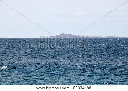 Djeu At Sea