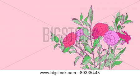 Pink and green hand drawn aster flowers bouquet illustration, vector
