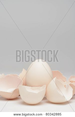 Egg with eggshells