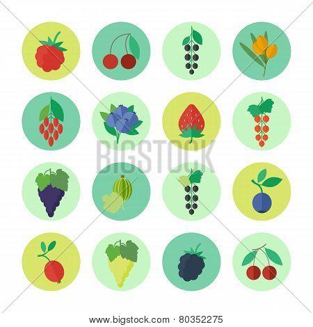 Berries Vector Icons Set