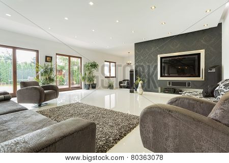 Enormous Living Room In Expensive House