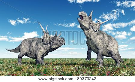Dinosaur Diabloceratops