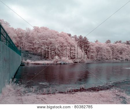 Pond Meadow Park In Infrared