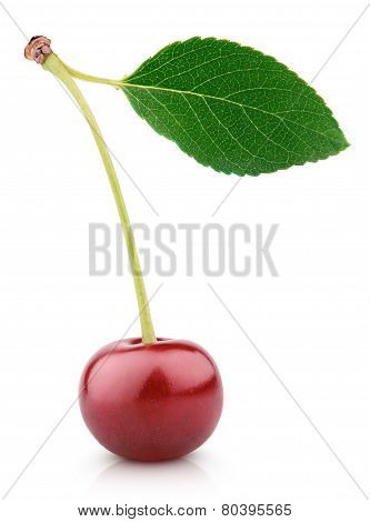 Cherry Berry With Leaf Isolated On White