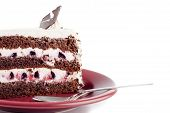 stock photo of marsala  - tasty cake on a marsala color plate on white table - JPG