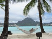 pic of french polynesia  - Hammock swaying in the wind in Bora Bora - JPG