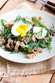 stock photo of rocket salad  - Tuna and rocket salad on plate - JPG