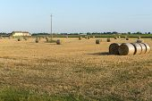 picture of ferrara  - Country landscape near Ferrara  - JPG