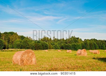 Haystacks In A Field