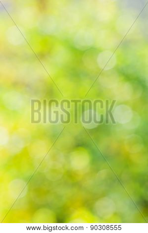 Abstract Blurred Yellow And Green Background