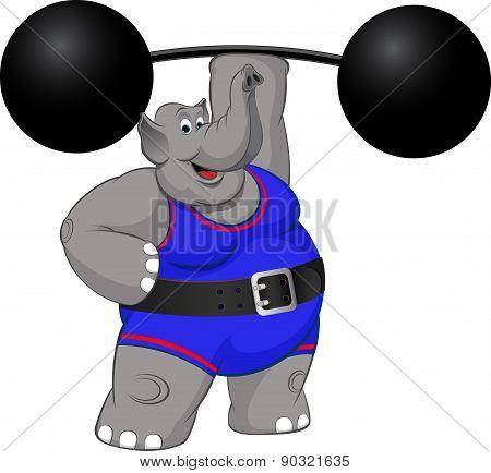 elephant strongman