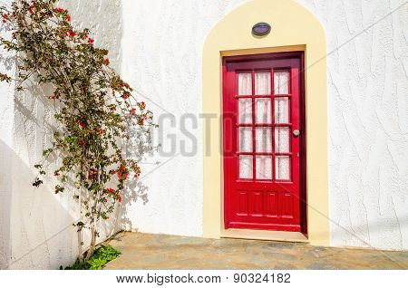 Wooden red doors and bush over white wall.