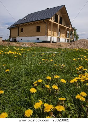 .construction Of A Wooden House And Yellow Dandelions In The Meadow