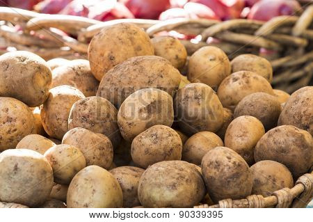 Fresh Organic Potatoes From Farmer's Market