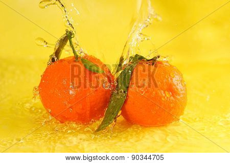 Two Tangerines And Water Splashes