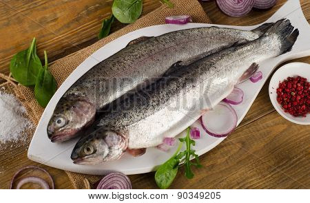 Raw Rainbow Trouts
