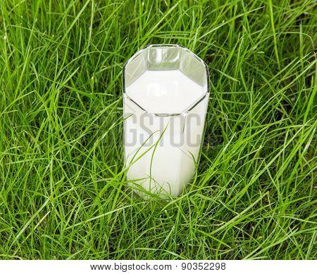 Milk on grass