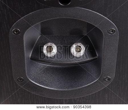 Speaker Terminal