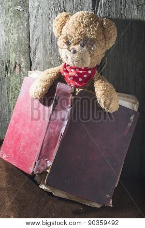 Children Teddy Bear With Book