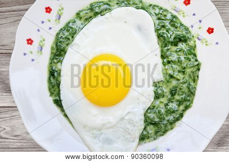 Fried Egg With Spinach Dip Closeup