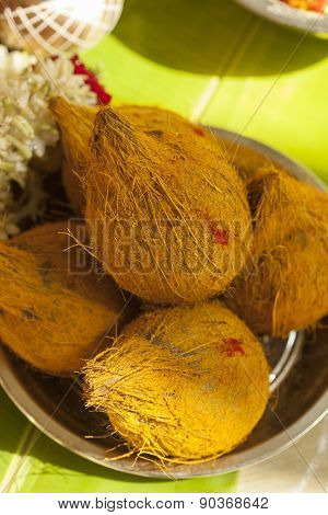 Coconuts with turmeric on upanayanam ceremony function.