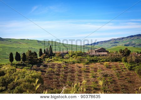 Farm Surrounded By Greenery