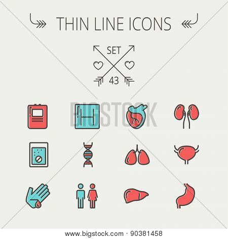 Medicine thin line icon set for web and mobile. Set include-human internal organs, hospital, DNA icons. Modern minimalistic flat design. Vector icon with dark grey outline and offset colour on light