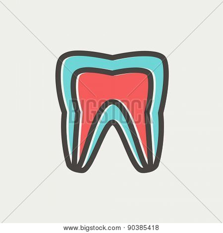 Molar tooth icon thin line for web and mobile, modern minimalistic flat design. Vector icon with dark grey outline and offset colour on light grey background.