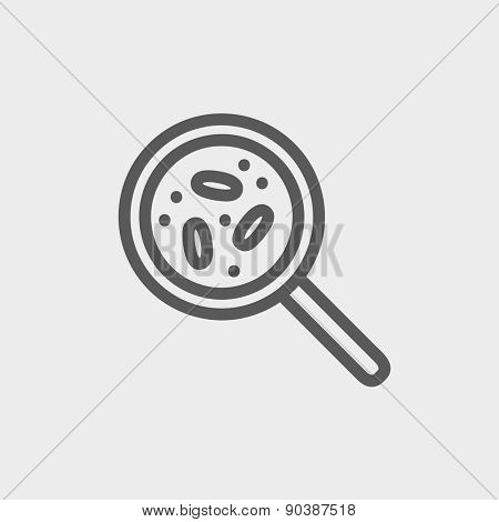 Microorganisms under magnifier icon thin line for web and mobile, modern minimalistic flat design. Vector dark grey icon on light grey background.